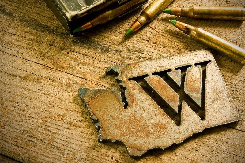 www.waguns.org